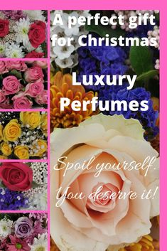 Tom Ford Luxury Perfumes are perfect gifts for Christmas! Give her/him a gift of love. Smell & Feel like a Celebrity! Spoil Yourself, Best Perfume, Tom Ford, Christmas Gifts, Fragrance, Celebrity, Luxury, Rose, Xmas Gifts
