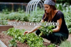Plantar un jardín.
