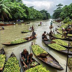 """Floating guava market in swarupkathi, Barisal Bangladesh photo by Bangladesh Travel Destinations Kerala, Beautiful World, Beautiful Places, Places To Travel, Places To Visit, Travel Destinations, Bangladesh Travel, Vietnam, Rio"