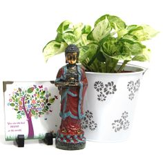 Show UR AffectionA 4.5x4.5 inches tabletop which have a wonderful message for your mother, a beautiful money plant smartly placed in a 6 inches high vase which has a diameter of 6 inches and a 8 inches high Buddha figurine makes for a perfect gifting option on this mother's day. http://www.giftsbymeeta.com/show-ur-affection-gifts1870?search=gifts1870