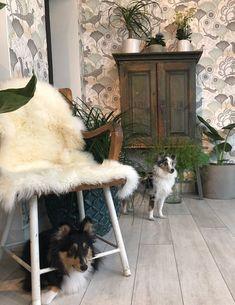Home In Garden sisustus Dogs, Animals, Animales, Animaux, Pet Dogs, Doggies, Animal, Animais