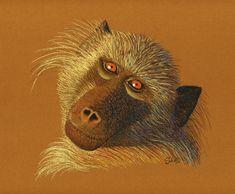 Soft pastel sketch of baboon face Welcome Design, Desktop Publishing, Baboon, Art Studios, Animal Drawings, Art Direction, Painted Rocks, Sketch, Pastel