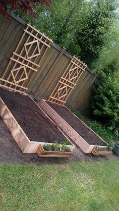 New vegi garden beds #gardenbeds #urbangardeningvegetables #metalgardensheds #GardeningLandscaping