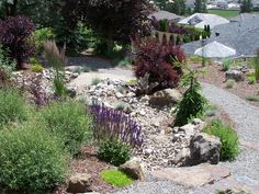 Dry Creek Bed Landscaping Designs | Synergy Landscape - Landscape Design with Feng Shui and Xeriscaping ...
