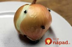 Zabudnite na klinčeky v citróne: Táto kombinácia by napadla málokomu, no proti muchám a komárom je neprekonateľná!