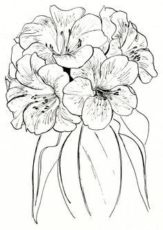 Rhododendron zoelleri Watercolor Projects, Watercolor Paintings, Watercolor Trees, Watercolor Portraits, Watercolor Landscape, Abstract Paintings, Pencil Drawings Of Flowers, Art Drawings, Flower Pattern Drawing
