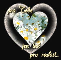 Good Morning, Daisy, Blog, Buen Dia, Bonjour, Margarita Flower, Daisies, Blogging, Good Morning Wishes