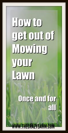 Ever do that thing where you try to be helpful and it turns into an epic fail? Yea, I did that just by mowing the yard. Click here to laugh at how I did it!