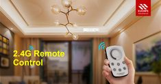You need one of 2.4G remote controls for your lighting.