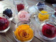 http://www.artifleurs-fleurs-artificielles.com/ Je suis une fleur stabilisée, 100% naturelle, je ne nécessite aucun entretien
