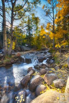 Whispers Amongst The Light by Theodore (Ted) Stark, via 500px; Rocky Mountain National Park