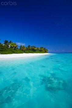 Tropical beach and lagoon, Maldives by Sakis Papadopoulos