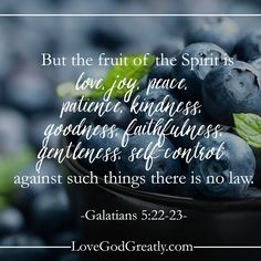 {Week 5 - Friday Post} The quality of our fruit is directly connected to how closely we are connected to Jesus, the vine. #Galatians Bible Study @ LoveGodGreatly.com