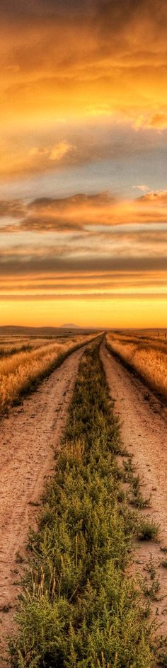 Road into the sunset...
