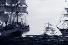 Several tall ships at the starting line during the Tall Ships Races event off the coast of Cascais, Lisbon, Portugal