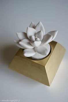 White Modern Succulent Sculpture in Faceted Geometric Polyhedron Gold