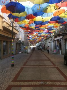 ...also to find Mary Poppins. #Portugal #HipmunkBL