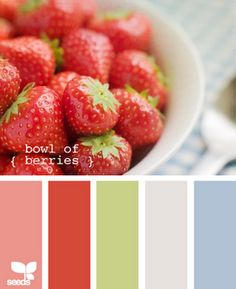 Whole house color scheme. Kitchen - red; living room - green; bedroom - blue; bathroom - grey.