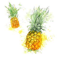 Pineapple watercolor illustration. www.amyholliday.co.uk.