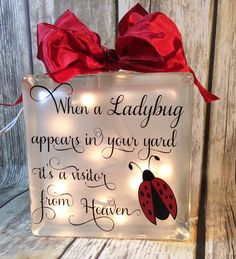 When a ladybug appears in your yard it's a visitor from Heaven Glass block memorial home decor memory blocks birthday anniversary Ladybug Garden, Ladybug Art, Ladybug Crafts, Baby Ladybug, Glass Block Crafts, Glass Blocks, Ladybug Quotes, Lady Bug Tattoo, Diy And Crafts