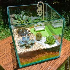 Cactus Terrarium, Garden Terrarium, Succulent Gardening, Planting Succulents, Container Gardening, Indoor Water Garden, Flower Pot People, Pot Jardin, Cactus Y Suculentas