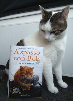 a street cat named bob ebook download