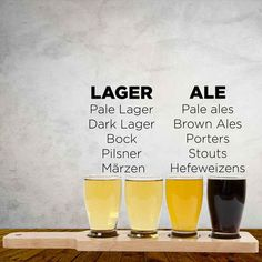 What are the Different Types of Beer?