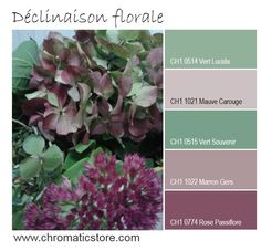 Une palette de teintes délicates et sensuelles inspirées de la nature. www.chromaticstore.com