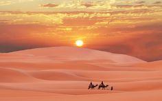 Best and oldest Desert Safari Dubai company. Desert Safari Dubai includes Dune Bashing, Sand Boarding, and BBQ dinner. 24 hours booking available Beautiful Sunset, Beautiful World, Beautiful Places, Amazing Places, Wonderful Places, Amazing Sunsets, Desert Sahara, Desert Sunset, Desert Tour