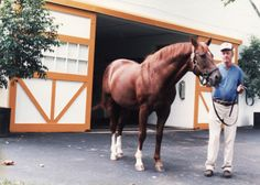 Secretariat At Claiborne Farm  Dad and I met this great horse back in the day. Will never forget that as long as I live. Thanks Pop!