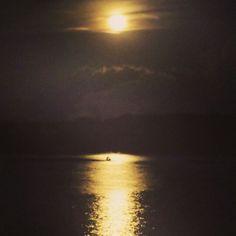 Luna Selvatica