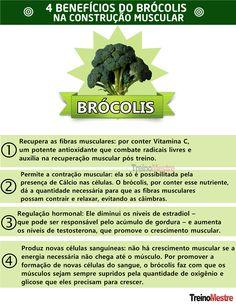 Brócolis: seus benefícios na construção muscular e para saúde