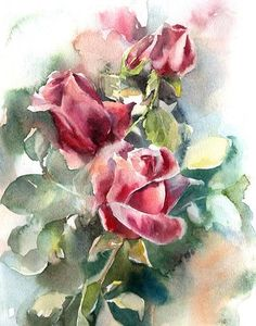 Fine Art Print from Original Watercolor Painting by CanotStop Roses fine art print, watercolor painting print of roses, botanical wall art print PRINT DETAILS Watercolor Artwork, Watercolor Rose, Watercolor Print, Watercolor Sketchbook, Painting Prints, Wall Art Prints, Painting Art, Botanical Wall Art, Botanical Flowers
