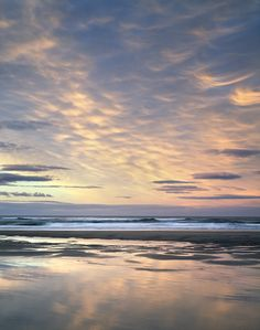 27 Best Budle Bay, Northumberland, UK images in 2014 | Ann, Coast, Bays