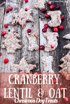 """Even dogs need a bit (or bite) of Christmas cheer and these Cranberry, Lentil & Oat Christmas Dog Treats fit the bill wonderfully.Freshly baked with premium, human-grade ingredients, these fancy, cookie-shaped Christmas dog treats are just what your favorite, tail-waggin' """"elf"""" deserves!"""