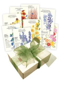 Water-Wise Flower Seed Collection: Grow these practically care-free, drought tolerant flowers wherever the sun shines brightly but the water is scarce. Give young seedlings a little TLC to get them started, then watch them thrive!