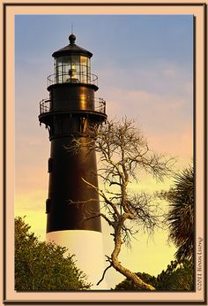 Lighthouse - Hunting Island State Park, SC