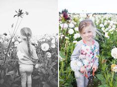Annemieke's Pluktuin - Let's pick some flowers! petitloublog.com