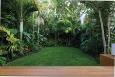 Lush deep greens, thick texture firecracker colour. #TropicalGarden
