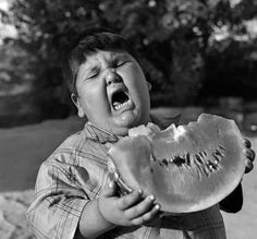 maybe i just think fat kids r funny....so politically incorrect. i apologize.