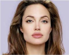 Eyebrows For Square Face - Angelina Jolie Eyebrow Shape