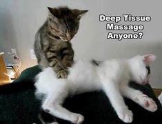 Deep Tissue Massage Anyone? | Cranberry Corner Wellness Clinic #deeptissuemassagehumor