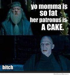 Yo momma harry potter edition