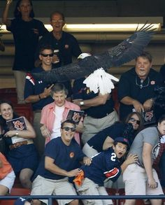 Spirit swoops over the crowd- Auburn 9-10-11