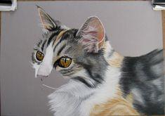 TEKENINGEN VAN MENS EN DIER Daisy, Drawing, Animals, Animal Drawings, Blogging, Shop Signs, Kunst, Animales, Animaux