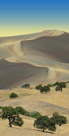 New desert landscape art travel Ideas Landscape Photos, Landscape Art, Landscape Paintings, Landscape Photography, Nature Photography, Desert Landscape, Beautiful World, Beautiful Places, Places Around The World