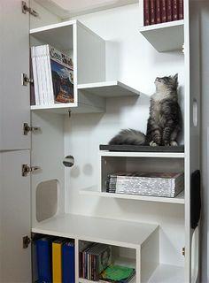katzenbaum kratzbaum ideen f r einrichtung f r haustiere. Black Bedroom Furniture Sets. Home Design Ideas