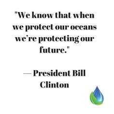Do you believe this to be true? #oceansarelife