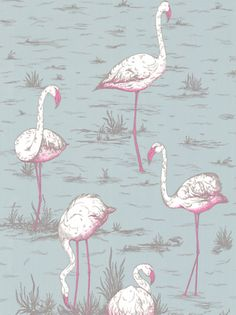 "Flamingos Wallpaper, Grey / Neon - Wallpaper is another way homeowners are showing their love for flamingos. Here, Cole & Son's ""Flamingos"" wallpaper features gray background with neon pink flamingos."