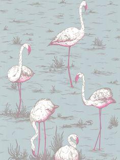 Cole & Son Flamingos Wallpaper, Blue / Pink, JohnLewis.com - John Lewis